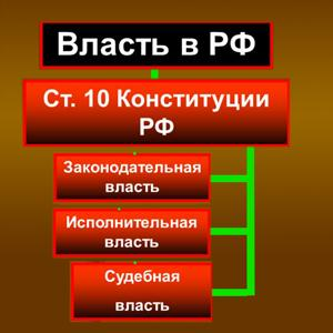 Органы власти Каргополя